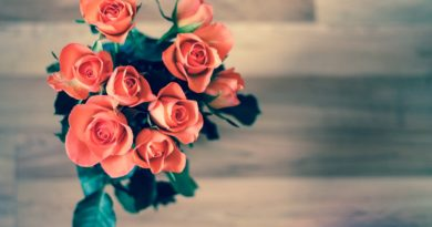 Vázané růže