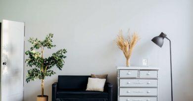 Nábytek a dekorace